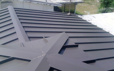 Standing Seam Metal Roof in Oakland Park, Florida